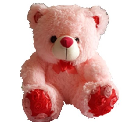 Send Soft Toys to Hyderabad
